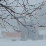 snowhamburg