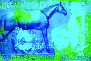 p16 _ marjorie guyon _ Blue Grass Horse Arhaus