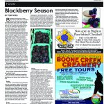 pg 11 HJ_AUGUST_2016 copy