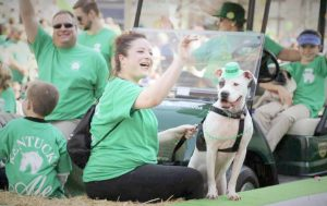 St. Patrick's Day: woman in a green shirt with a dog wearing a green hat