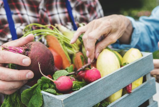 woman grabbing vegetables out of box held by man
