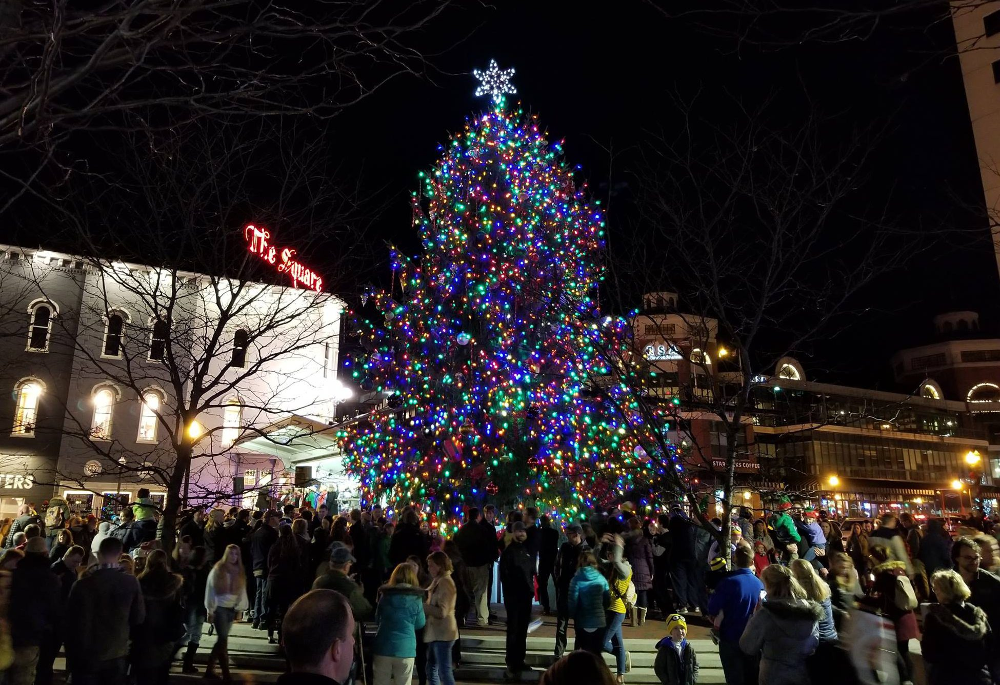 Is the next Lexington Christmas tree in Hamburg? - Hamburg ...