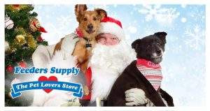 pets: santa holding two dogs posing for a picture