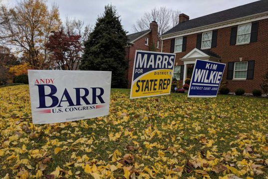 3 political yard signs with yellow leaves in the grass and a house in the background