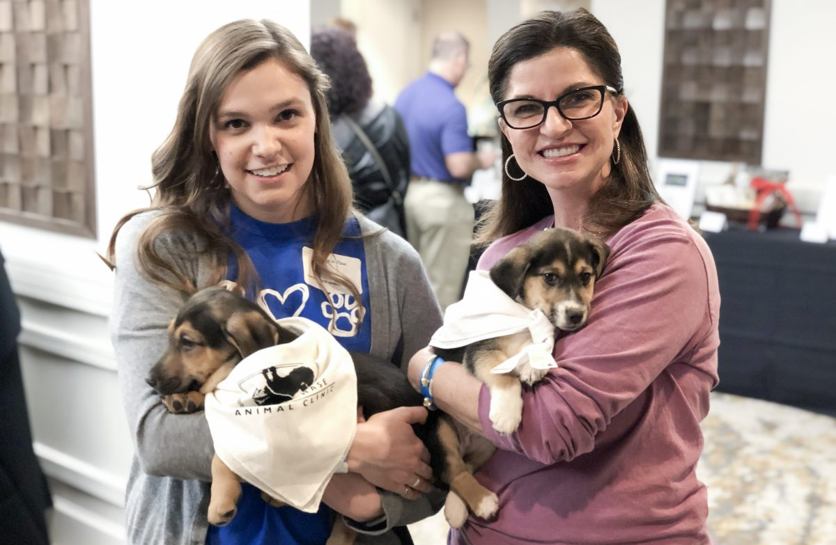 Lexington Humane Society Pet News: two women holding puppies