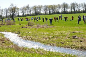Home and Garden: group of people in a field planting trees